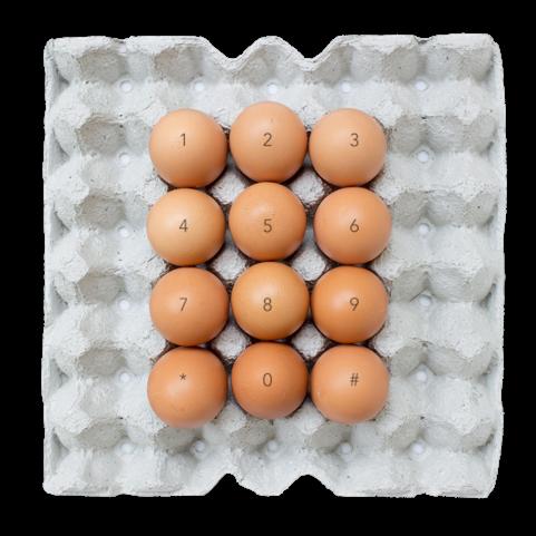 eggstra contact