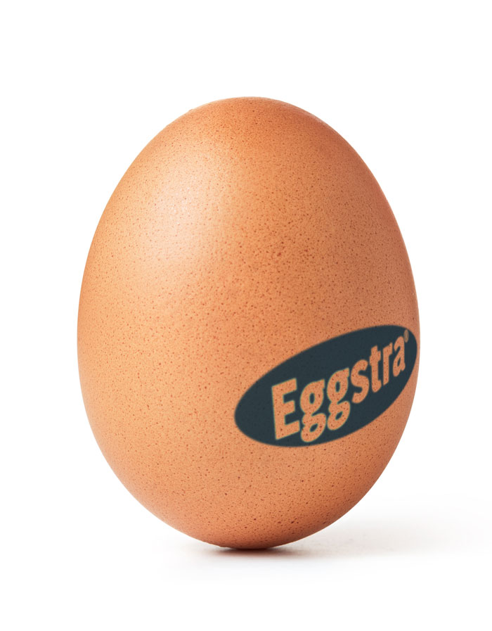 waarom eggstra